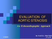 ECHOCARDIOGRAPHIC EVALUATION OF AORTIC STENOSIS