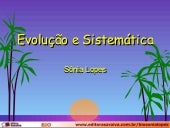 Evolucao Sonia Lopes