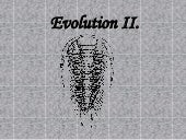 Evolution Ii