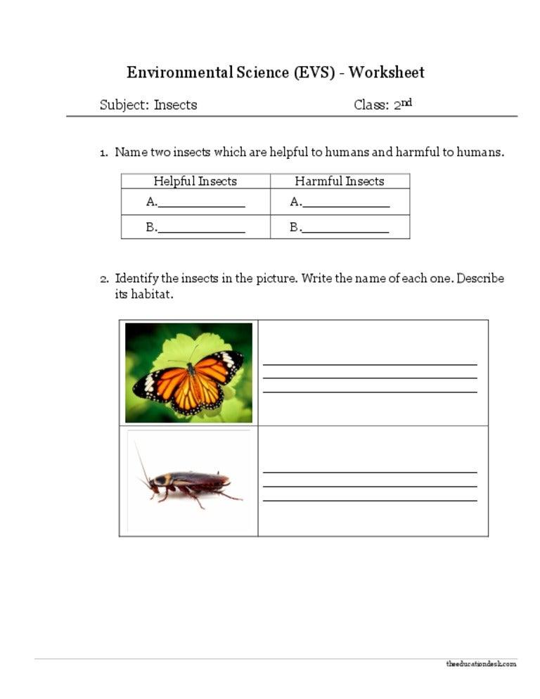 Printables Environmental Science Worksheets environmental science worksheets pichaglobal evs insects worksheet class ii