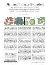 Excr sciam primate-evolutiondiet
