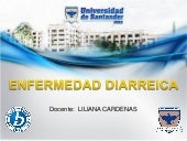 Expo diarreas liliana cardenas 2