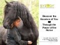 Rocky Mountain Horse Expo - Discover the Essence of You Through the Power of the Horse