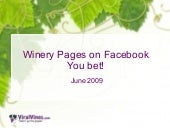 Facebook Research Viralvines June 2009