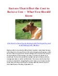 Factors That Affect the Cost to Raise a Cow – What You Should Know