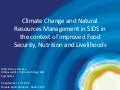 Climate change and natural resources management in SIDS in the context of improved food security, nutrition and livelihoods