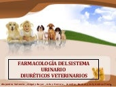 Farmacologia veterinaria   diureticos