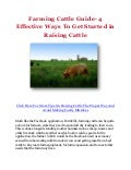 Farming Cattle Guide- 4 Effective Ways To Get Started in Raising Cattle