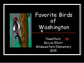 Favorite Birds Of Washington