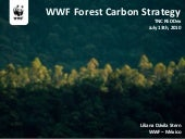 WWF Forest Carbon (Liliana)