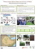 Piloting climate-adaptive forage seed systems in Ethiopia—FeedSeed pilot project: Outcomes and scaling-up benefits