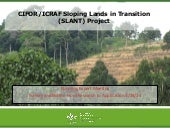 CIFOR/ICRAF sloping lands in transition (SLANT) project