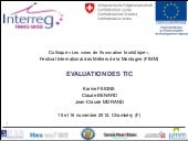 Fimm   evaluation des tic v3