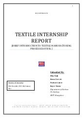 Final document interns-BSL