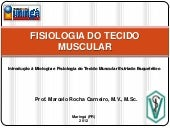 Fisiologia do tecido muscular
