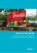 Dead in the water - Ethical ownership and water management in the Norwegian Government Pension Fund Global