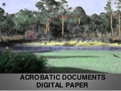 Acrobatic Documents