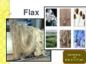 Flax fiber, manufacturing, physical...