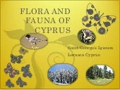 Flora and Fauna of Cyprus Eco Map