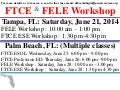 FELE and FTCE Summer Workshops