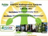 FOODY Hydroponics Systems Overview
