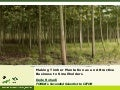 Making Timber Plantation an Attractive Business to Smallholders