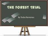 Forest trial Lithuania