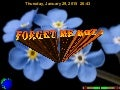 FORGET ME NOT !
