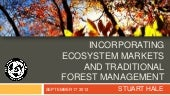 Incorporating Ecosystem Markets and...