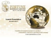 Fortune Minerals Ltd. video