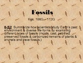 Fossils power point