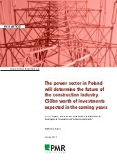The Power Sector In Poland Will Det...
