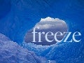 FREEZE: Consider Your Career