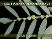 From Floras to Interactive Keys