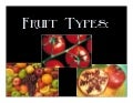 A Look at Fruit Types