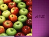 Fruits   apples