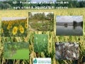 G2 - Productive, profitable, resilient agriculture & aquaculture systems