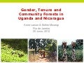 Gender, tenure and community forests in Uganda and Nicaragua