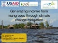 Generating income from mangroves through climate change mitigation