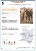 Sustainable breeding strategies for the Red Maasai sheep