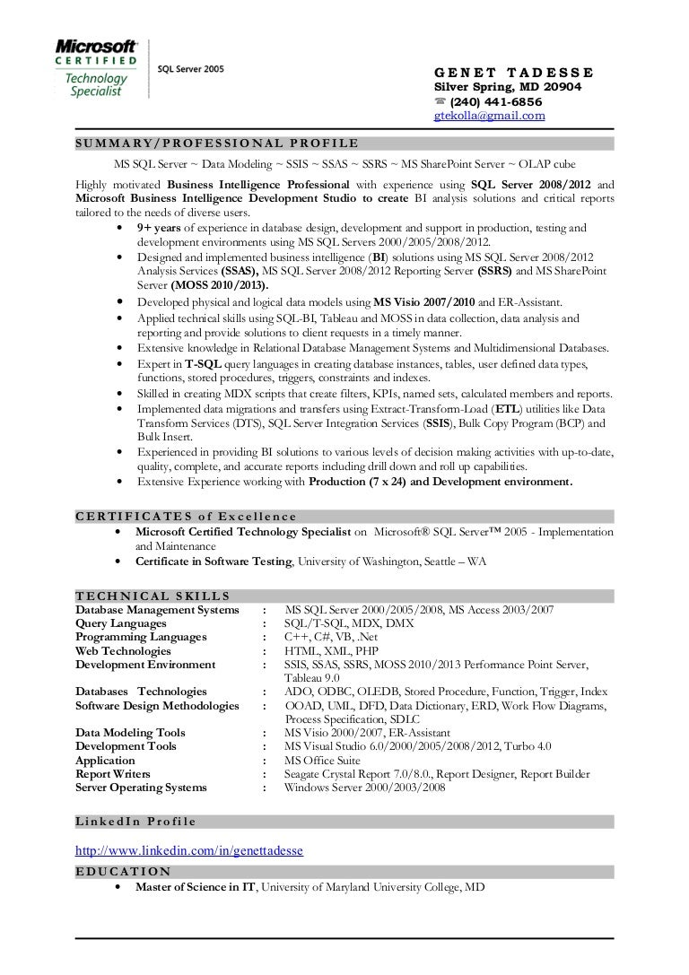 business intelligence resume business system analyst resume sample seangarrette business intelligence architect resume exles seangarrette business