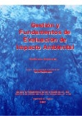 Gestion y fundamnetos de las eia (2007)