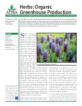 Herbs: Organic Greenhouse Production