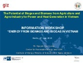 GIZ2013-The Potential of Biogas and...