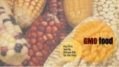 Genetically Modified Food (GMO)