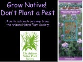 Grow Native!