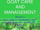Goat Care And Management Irshad