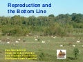 Beginning Farmer Livestock 2: Reproduction and the Bottom Line