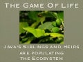 The Game Of Life - Java's Siblings and Heirs are populating  the Ecosystem