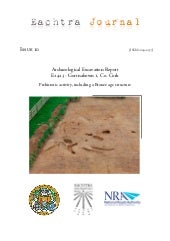 Archaeological Report - Gortnahown ...